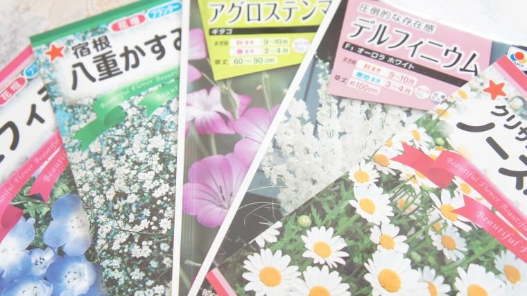 花の種 秋まき