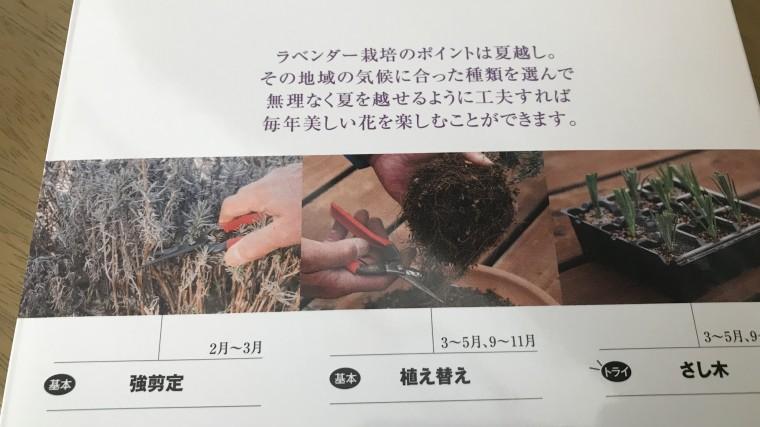 ラベンダー 栽培の本